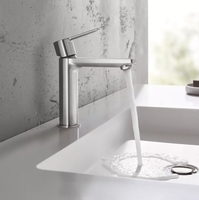 Grohe Lineare S-Size 32114001