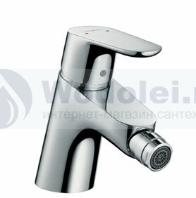 ���� ��������� Hansgrohe Focus 31920000