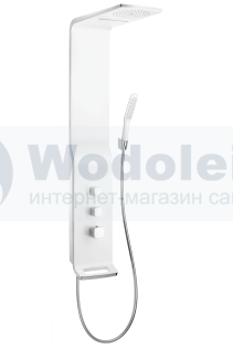 Hansgrohe Raindance Lift 27008
