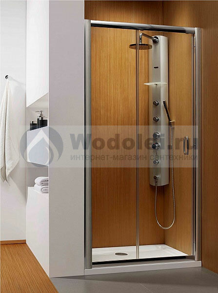 Фото Душевая дверь Radaway Premium Plus DWJ 110 transparent